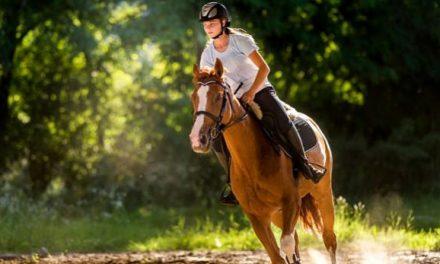 Kalërimi ndihmon personat që kanë pasur sulm në tru