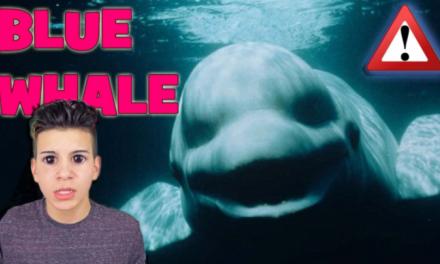Alarmante: 'Balena blue' mbërrin edhe në Kosovë, dy raste në Gjilan