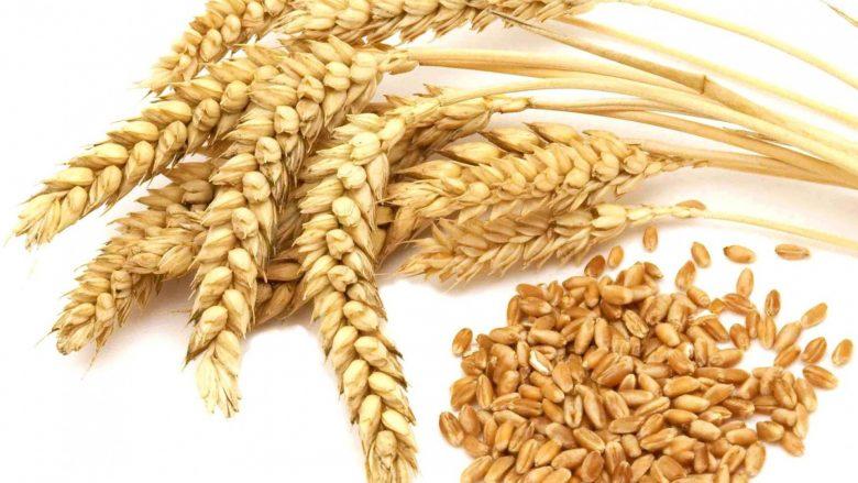 Kosova siguron rreth 60% të nevojave për bukë