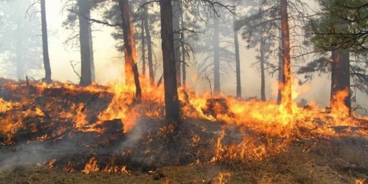 Përfshihet nga zjarri fshati Sllovij i Lipjanit!